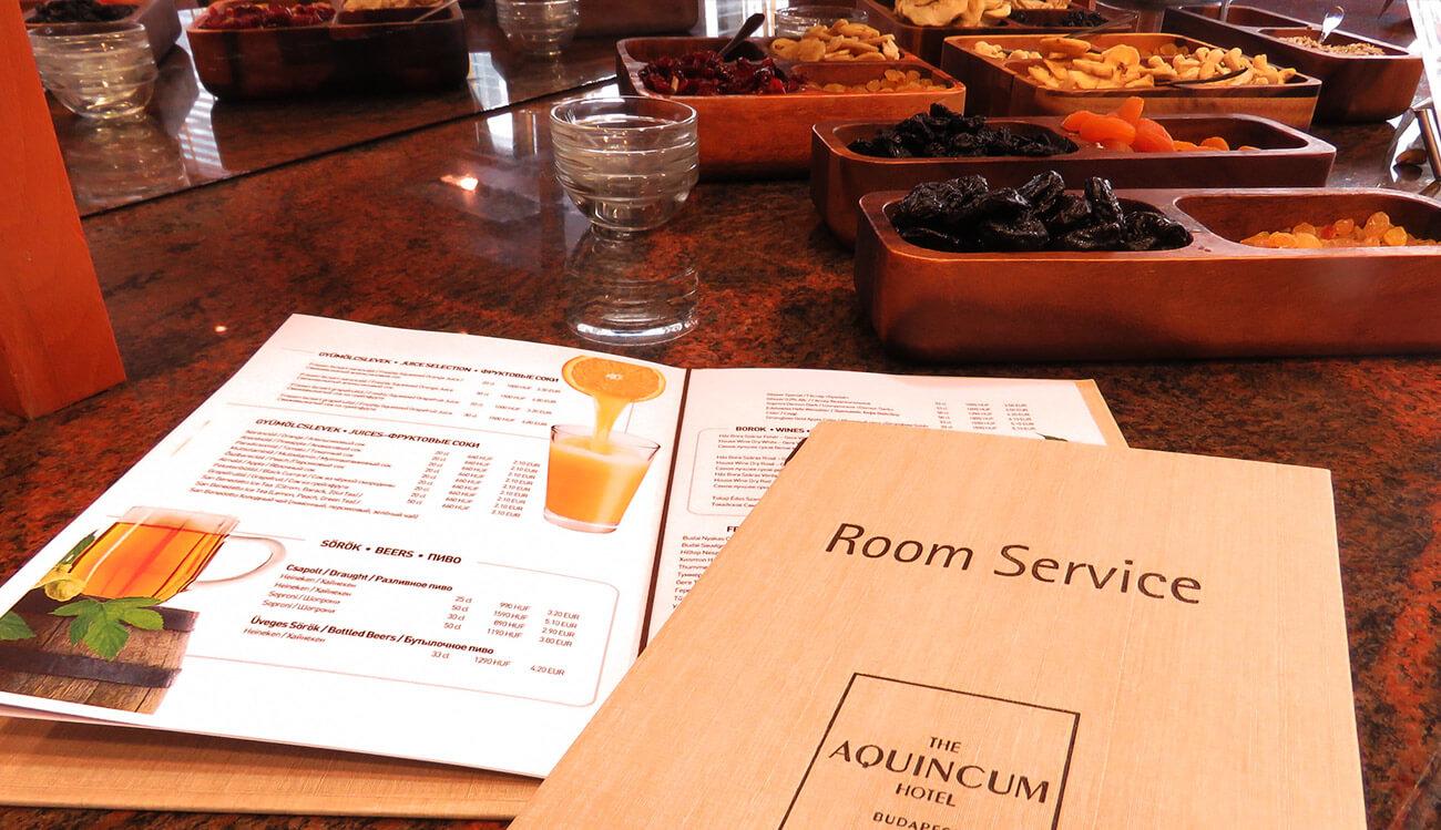 the-aquincum-hotel